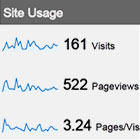 Analytic Website Report Usage